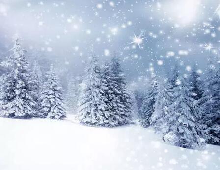钢琴在冬季保养需要注意什么