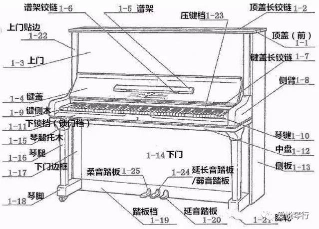 钢琴的构造及保养注意事项大汇总